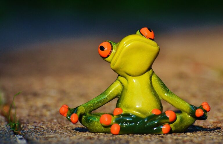 Mindfulness & leadership